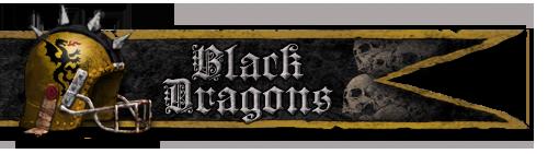 Les Franchises Cabalvision par roster Banniere-blackdragons