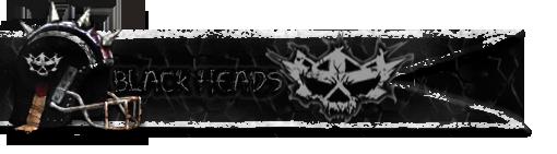 Les Franchises Cabalvision par roster Banniere-blackheads