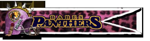 Les Franchises Cabalvision par roster Banniere-panthers