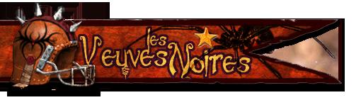 Les Franchises Cabalvision par roster Banniere-veuves