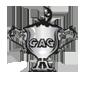 Coupe des ROIS du GAG