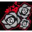 Les records de la Cabalvision RosesNoires_64px