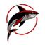 Les Franchises Cabalvision par roster Sharks-64
